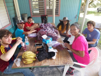 Puerto Rico Chapter Rambutan Pickup