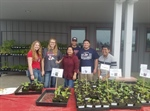 Cal Epsilon Volunteers at the Spring Veggie Plant Sale!