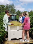 North Carolina Chapter Visits Duplin Winery and Chronicler Barber's Farm