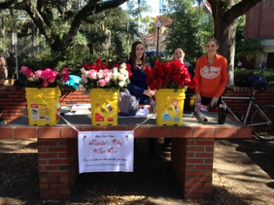 Florida Valentine's Day Rose Sale