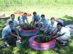 Sustainable Agriculture School Project (Puerto Rico chapter)